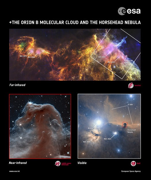 The Horsehead Nebula in both near and far-infrared. and in visible light (Image: ESA)